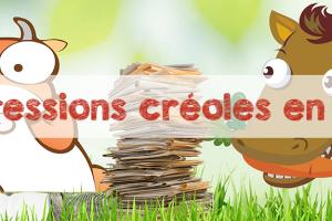 8 expressions créoles de l'île Maurice